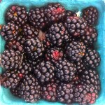 A punnet of blackberries